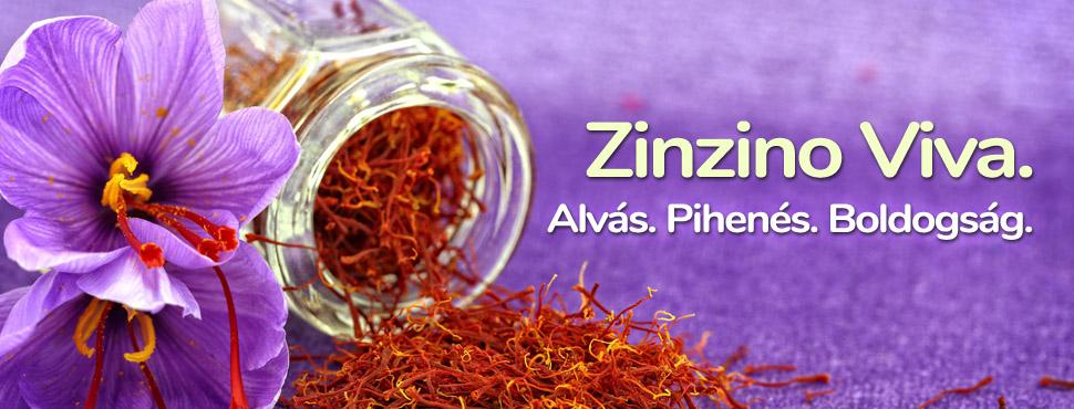 Zinzino Viva az alás mestere - Segít a fáradtság és a kimerültségérzés csökkentésében