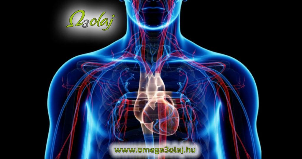 omega 3 szív érrendszer hatása